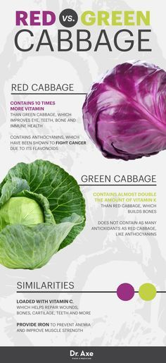 The Disease-Fighting, Gut-Healing Power of Red Cabbage - Dr. Axe