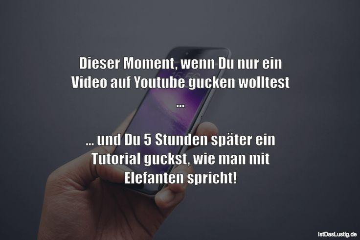 Dieser Moment, wenn Du nur ein Video auf Youtube gucken wolltest ... ... und Du 5 Stunden später ein Tutorial guckst, wie man mit Elefanten spricht! ... gefunden auf https://www.istdaslustig.de/spruch/1026 #lustig #sprüche #fun #spass