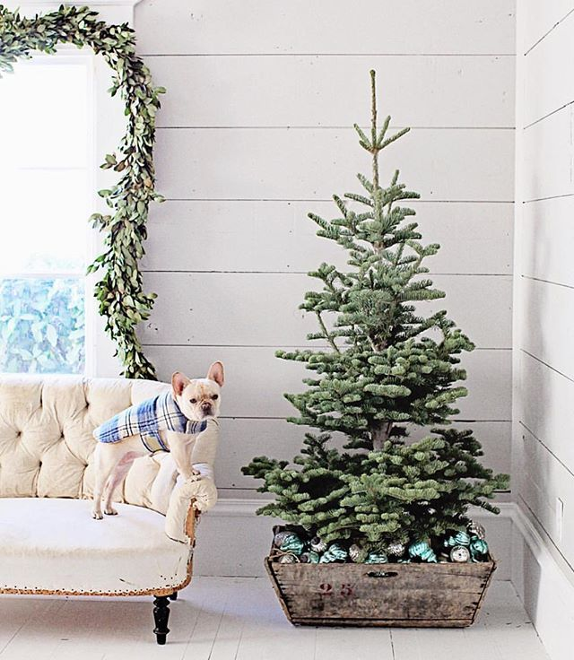 Best country christmas decorating ideas images on