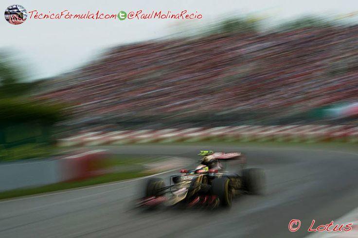 Jolyon Palmer hará los primeros libres en las próximas cinco carreras con Lotus