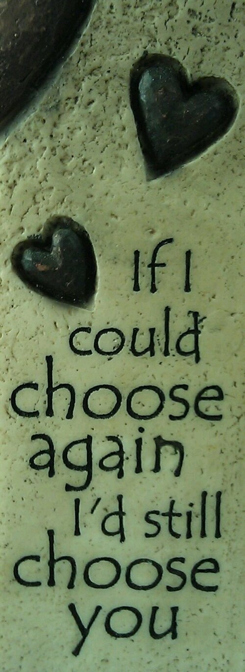 I'd Still Choose You!: Thoughts, Beats, Inspiration, Quotes, Bears, Marriage, Families, True Stories, Honey