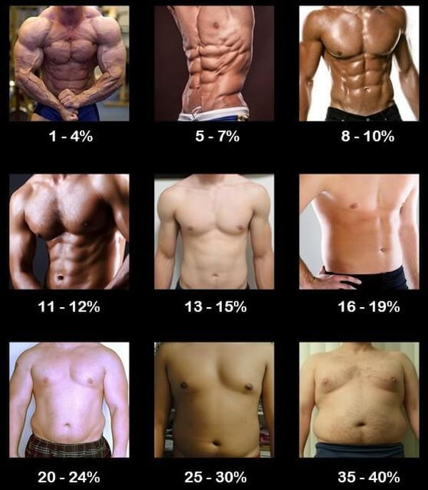 Best 25 body fat percentage chart ideas on pinterest body fat