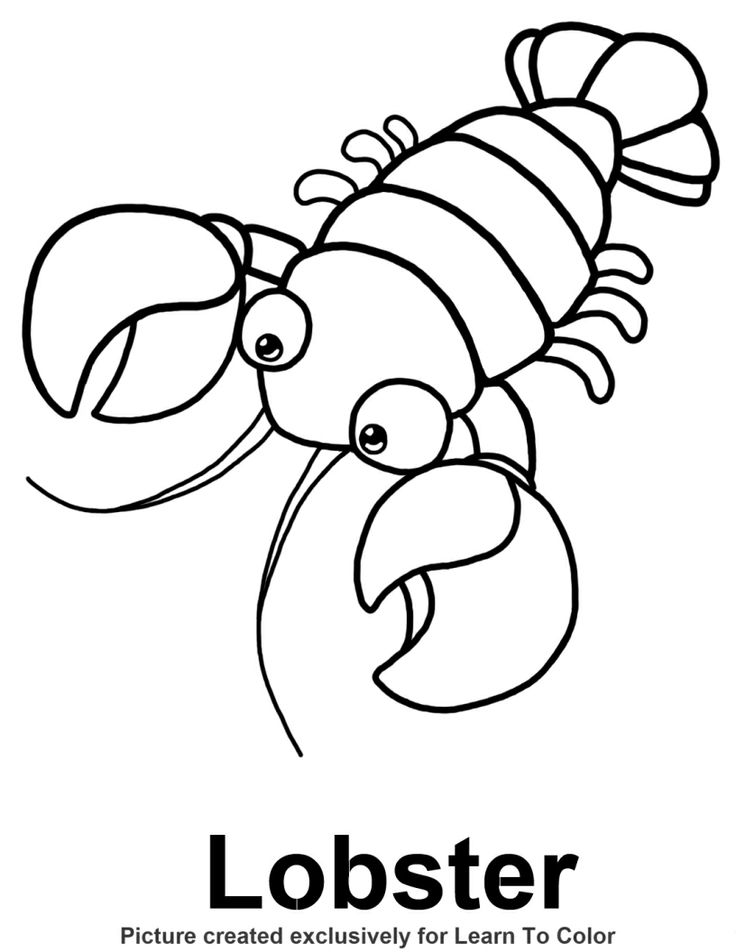 lobster coloring page under the sea pinterest
