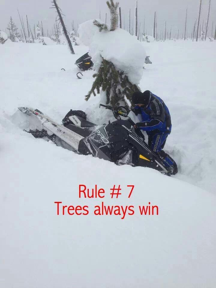 Rule 7 Trees Always Win Snowmobiling Pinterest Snow