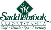Saddlebrook Resort | Tennis Camp For Adults | Tampa Tennis