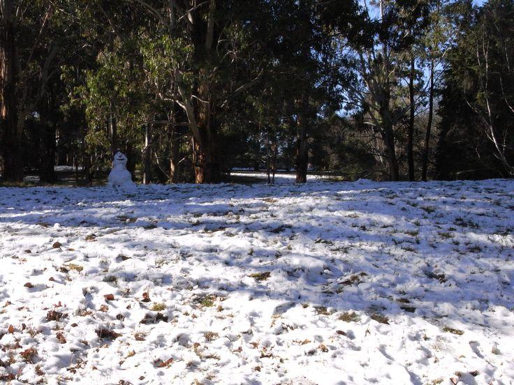 Snow at Laurel Hill