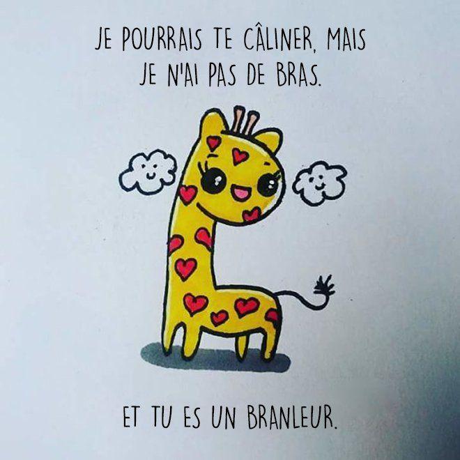 1000 id es sur le th me carte de voeux humoristique sur for Carte de voeux humour