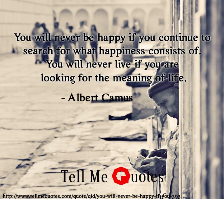 You will never be happy if you continue to search for what happiness consists of. You will never live if you are looking for the meaning of life. | Albert Camus Quotes