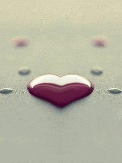 heart - GIF -
