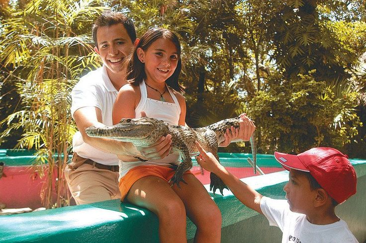 Cancún Things to Do with Kids:  10Best Attractions Reviews