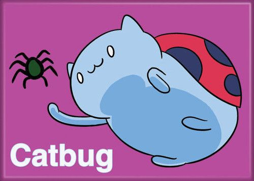 94 Best CatBug Images On Pinterest