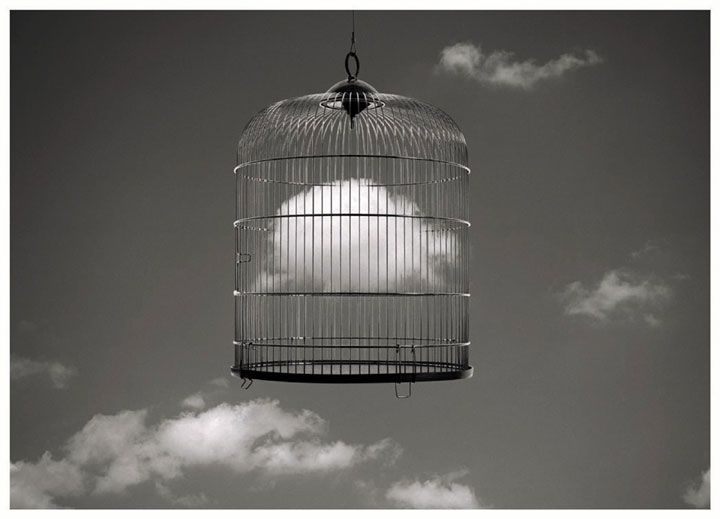 Never let go of your dreams, if you keep them trapped in a cage they will never amount to anything, ever either, let them be free and be yours. They could happen.