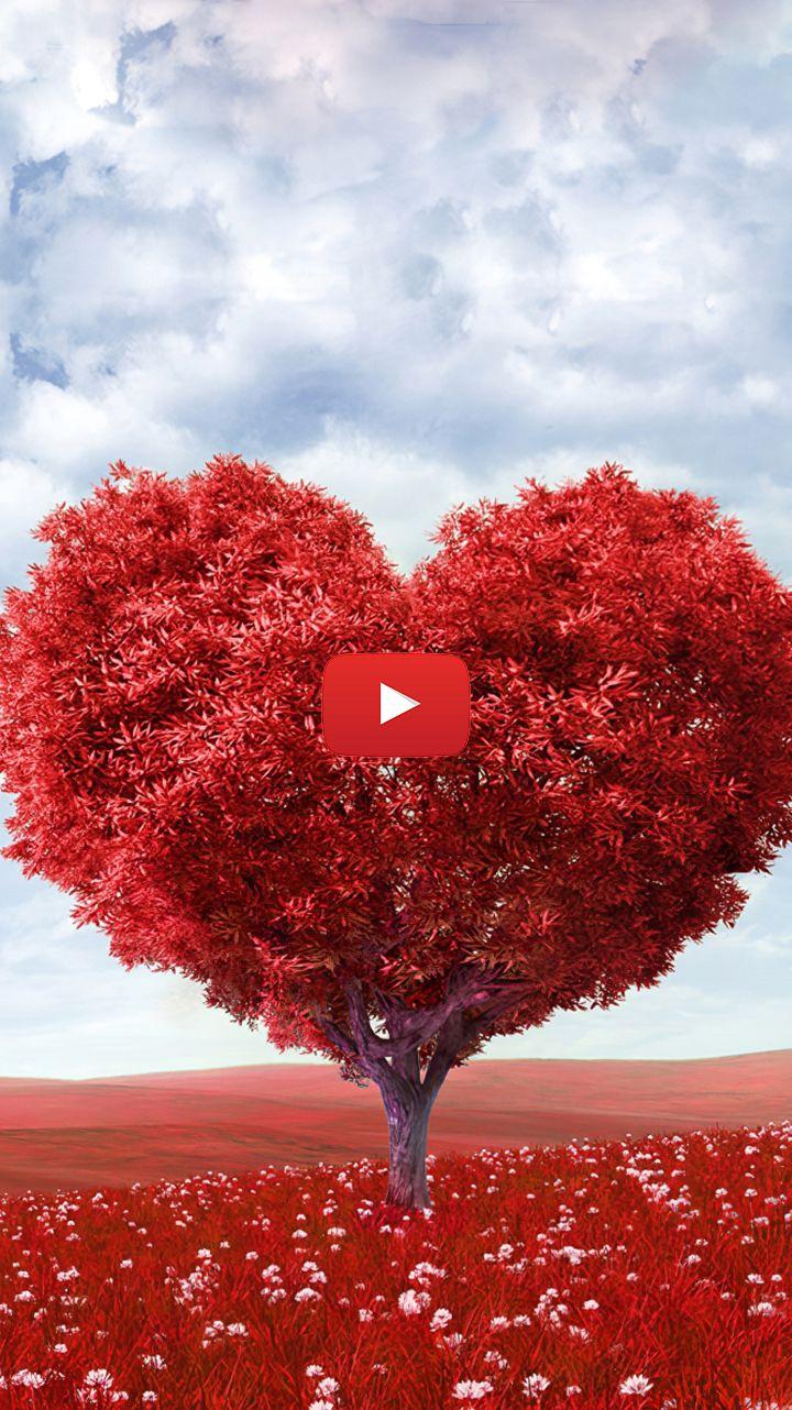 Abstract Heart Wallpaper Big Heart Wallpaper Heart Wallpaper Cute Red Heart Tree Live Wallpapers Heart Wallpaper Heart Tree