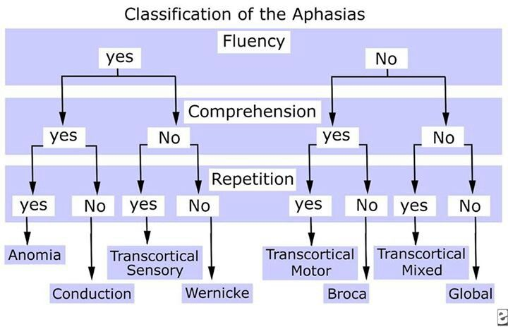 class of aphasia