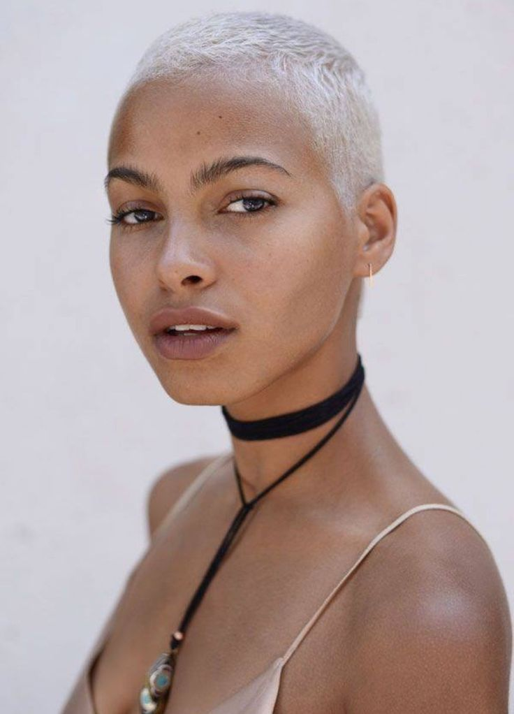 photos of short haircuts for black women coupe ras 233 e femme le grand retour de la buzz cut 3532 | 22d9ec48bcb689eaf563df9b12abea06
