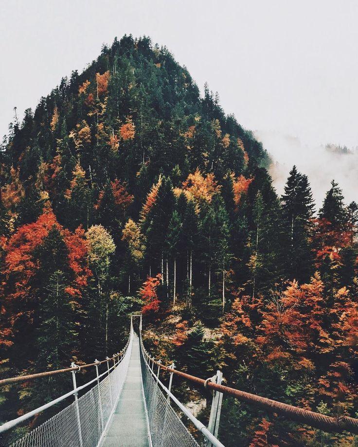 "8,063 Suka, 164 Komentar - Nicole Hunziker (@nicolehunziker) di Instagram: ""Happy these colors are back ❤️"""