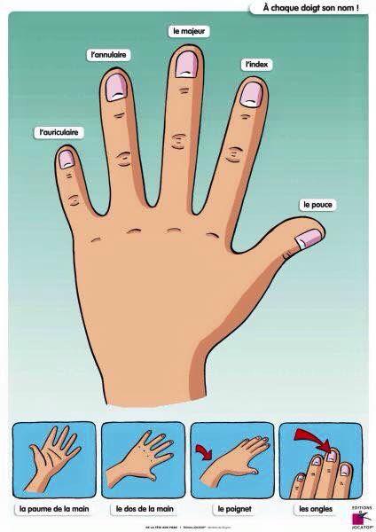 Fingers Fingers