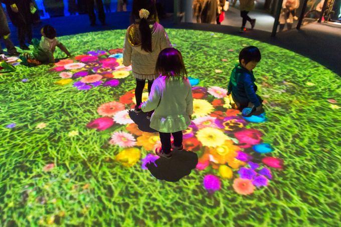 横浜・八景島シーパラダイス「楽園のアクアリウム」最新技術で楽しむ、花々舞う幻想的な水族館 | ファッションプレス