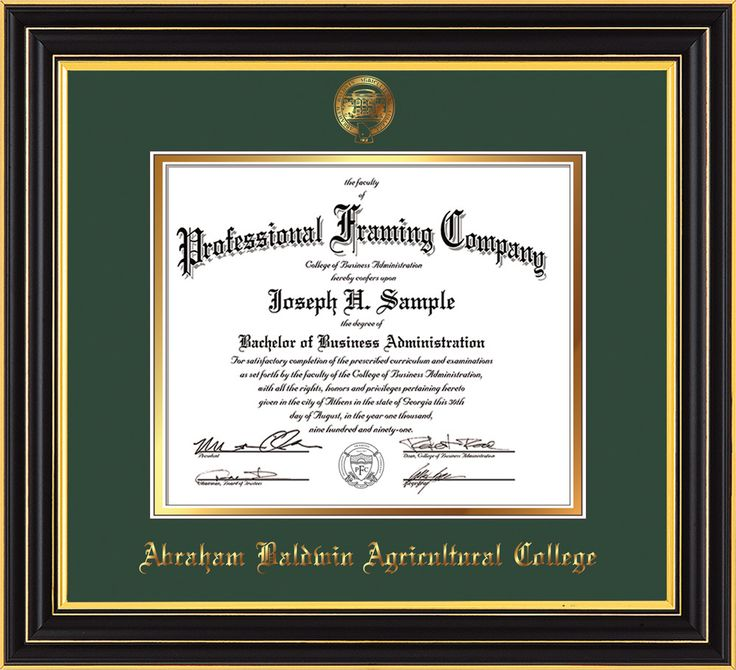 Image of Abraham Baldwin Agricultural College Diploma Frame - Satin Black - w/Embossed ABAC Seal & Name - Green on Gold mat