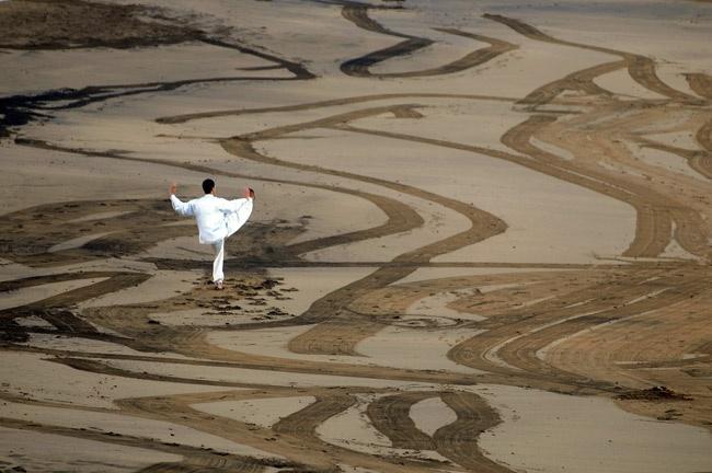 La danza de la grulla preside la mañana y un gladiolo blanco va musitando el misterio más allá de todo.