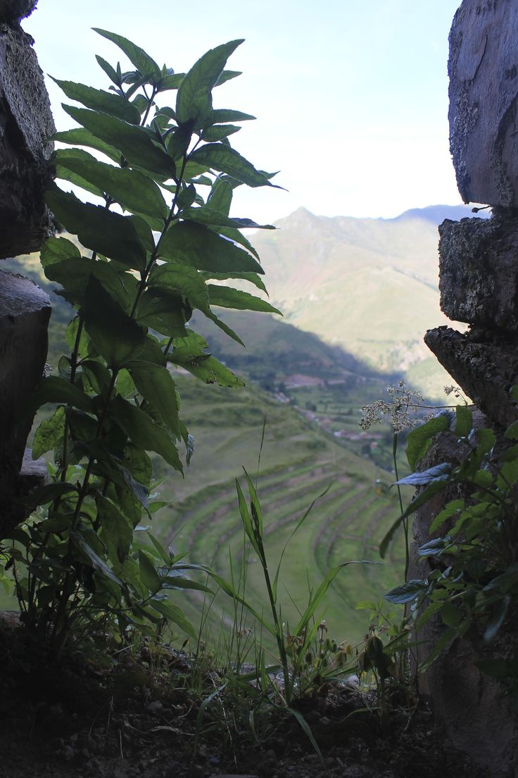 #Pisac #Peru view from Inca ruins