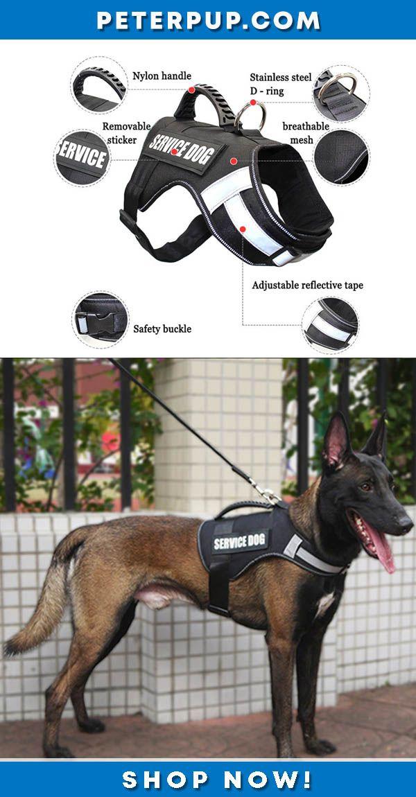Service Dog Harness Vest For Medium Large Dogs Service Dogs