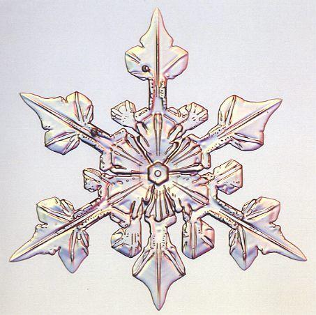 Three fold snowflake - Photo by Patricia Rasmussen