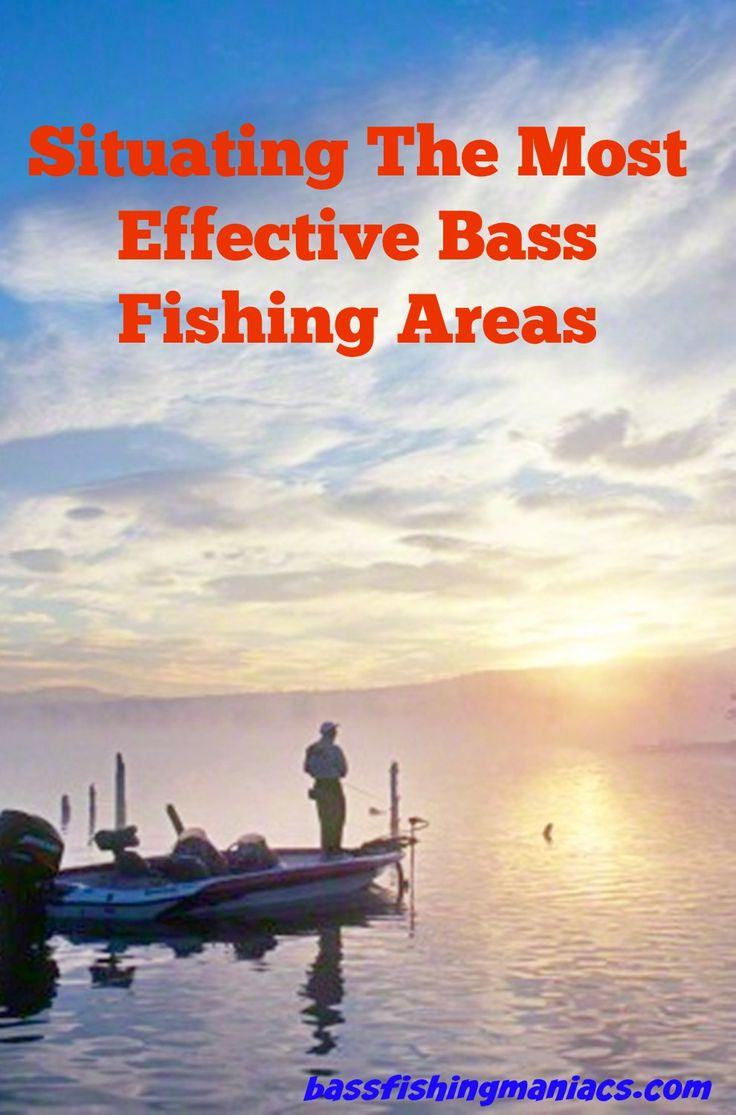 Duval County Schools Ero - Just what is it in bass fishing that everyone is driven on to involve on such