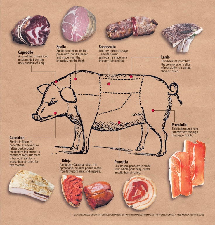 All about pork !