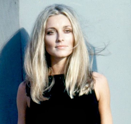 Sharon Tate in the 1960s.