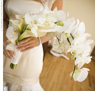 The bride carried phalaenopsis orchids and mini white calla lilies tied together with an ivory satin ribbon.