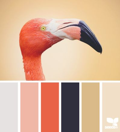 Joyful-feeling palette well-suited to a high Enthusiasm value. Also nice for Innovation. #VoiceValues | color profile via Design-Seeds | commentary via The Voice Bureau at AbbyKerr.com