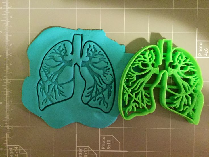 If you have a custom shape or logos in mind please contact us for your unique custom orders. This listing is for Lungs Anatomy Cookie Cutter. Great size to make cookies for any fun occasions. The dept