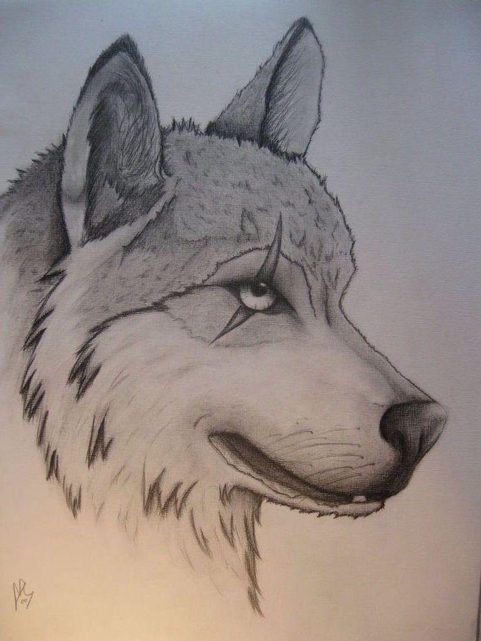 Pin Auf Pencil Drawings