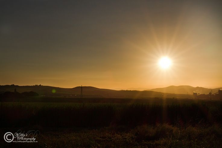 I have been trying for a while to perfect the star sunburst and seem to be getting it right now for a daytime image of one. Sunset taken on outskirts of Empangeni showing Exarro on the right