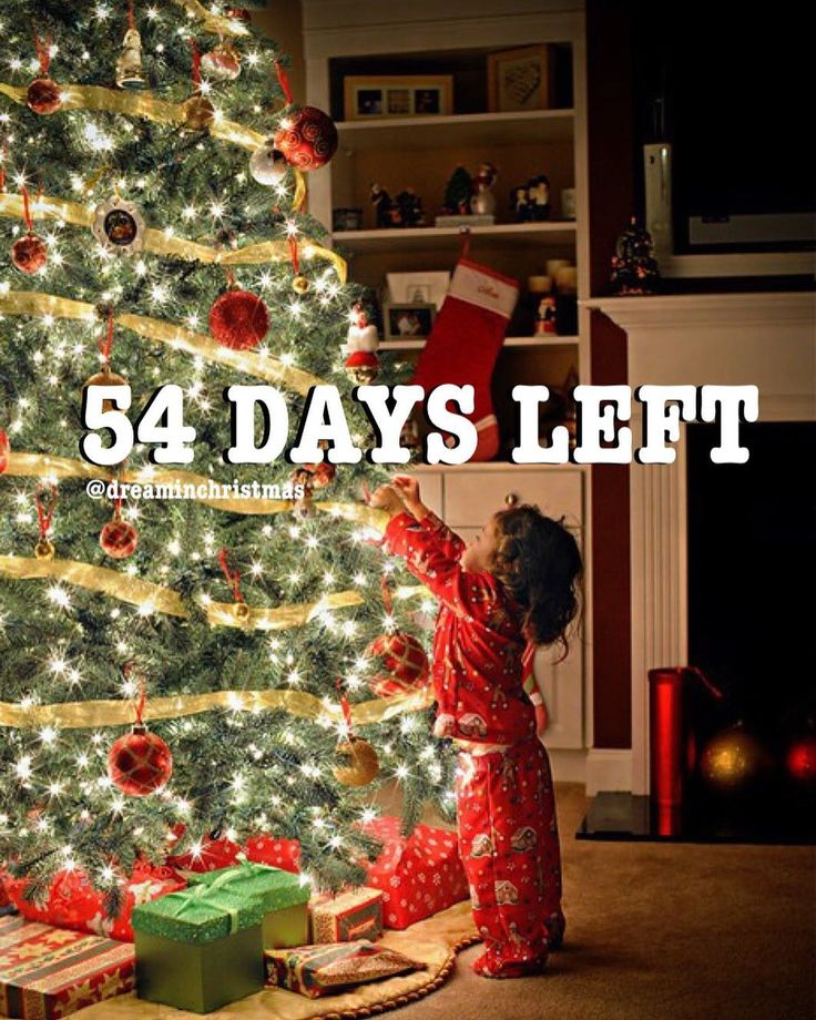 It's 54 days until Christmas • • Photo by ?? • •