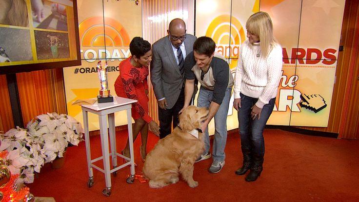 Ray Charles, the blind golden retriever, wins Orange Room Award http://www.today.com/orangeroom/ray-charles-blind-golden-retriever-wins-orange-room-award-2D11733637