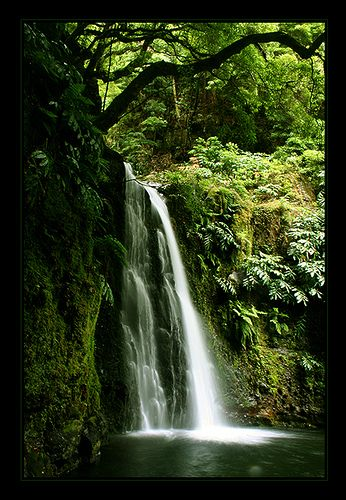 Salto de Prego, Sao Miguel, Azores   i almost saw this but was well on my way!!