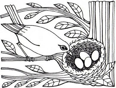 417 best Art Coloring Pages Designs images on Pinterest Animal