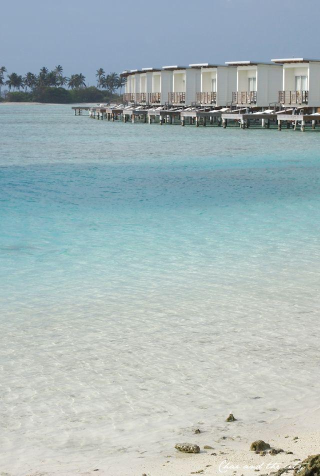 Maldives, Kandooma: http://divaaniblogit.fi/charandthecity/2014/01/16/malediivit-matkakertomus/