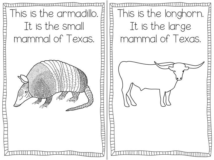 Texas Symbols Freebie Texas History
