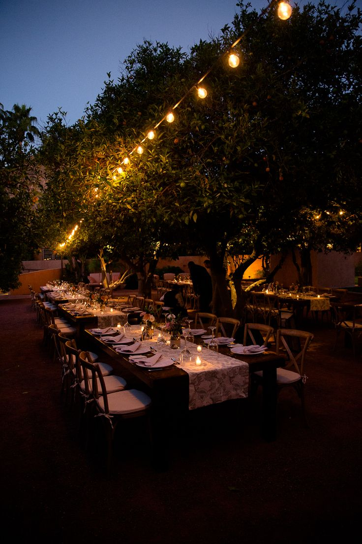 Beautiful outdoor candle light dinner wedding reception under the orange grove Phoenix, Sedona, Grand Canyon & Las Vegas 2015 | Well, Hello Photography Blog