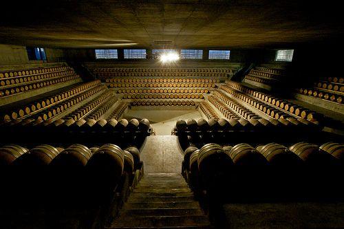 La barricaia di Rocca di Frassinello, dell'architetto Renzo Piano, 2007 #Tuscany