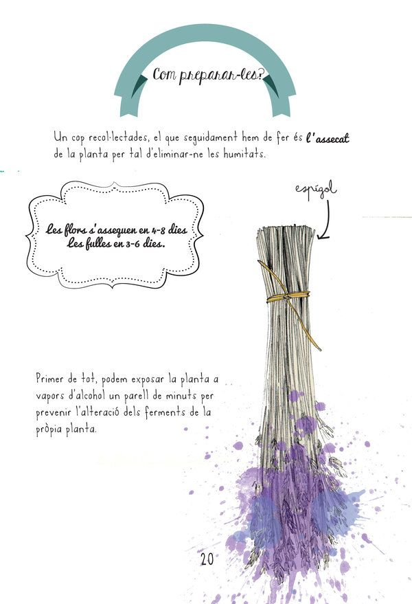 """#KIT #FARMACIOLA #NATURAL #LLIBRE #ILLUSTRACIO #CROWDFUNDING - """"El Kit de remeieres indispensable per viatjar"""" és un quadern il·lustrat que ens acosta a les labors ancestrals que es feien a casa, com preparar els remeis casolans amb les herbes que creixien al voltant. Un quadern que explica com elaborar la teva farmaciola natural. ilustración +INFO http://www.tintasonora.com Crowdfunding verkami http://www.verkami.com/projects/9848-el-kit-de-remeieres-indispensable-per-viatjar"""