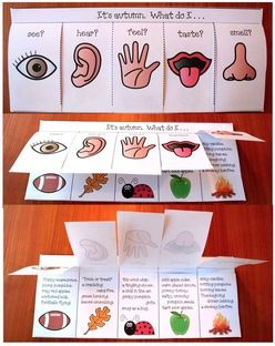 "5 Senses activities: Science 5 Senses. Cute ""flip-flap"" booklet. Students choose a season & then write what they ""see, hear, feel, taste, & smell"" during ""winter, spring, summer or fall""!"