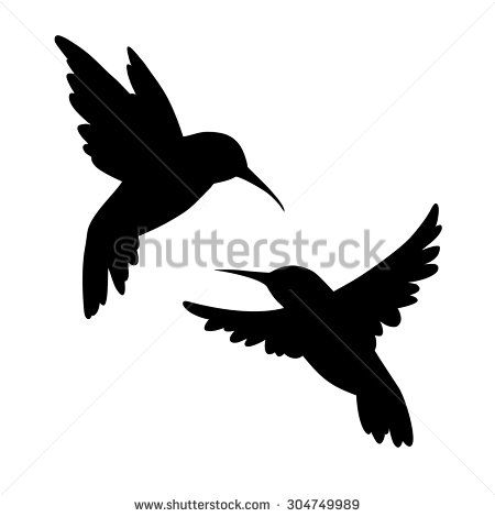 Hummingbirds silhouette. Isolated vector. Set.