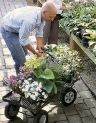 The Top 10 Most Common Gardening Mistakes