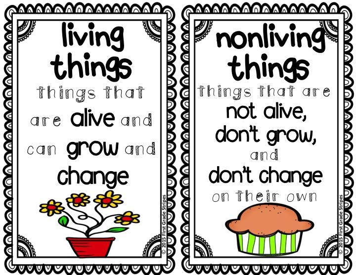 Living & Nonliving Things Activities | Science ...