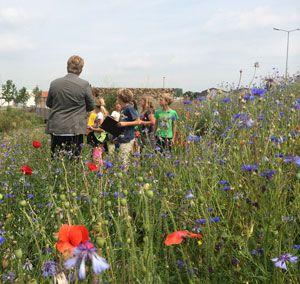 Children educated at Ecopark, Alphen aan den Rijn (landscape design by Vollmer  Partners)
