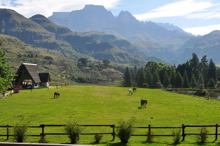Champagne Castle is a mountain in the central Drakensberg range, and is the second highest peak in South Africa. It contains a series of subsidiary peaks, amongst them, Cathkin Peak, Sterkhorn, Mount Memory, Monk's Cowl and Dragon's Back.